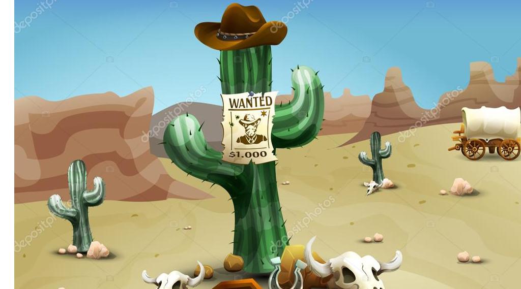 Wild West feest